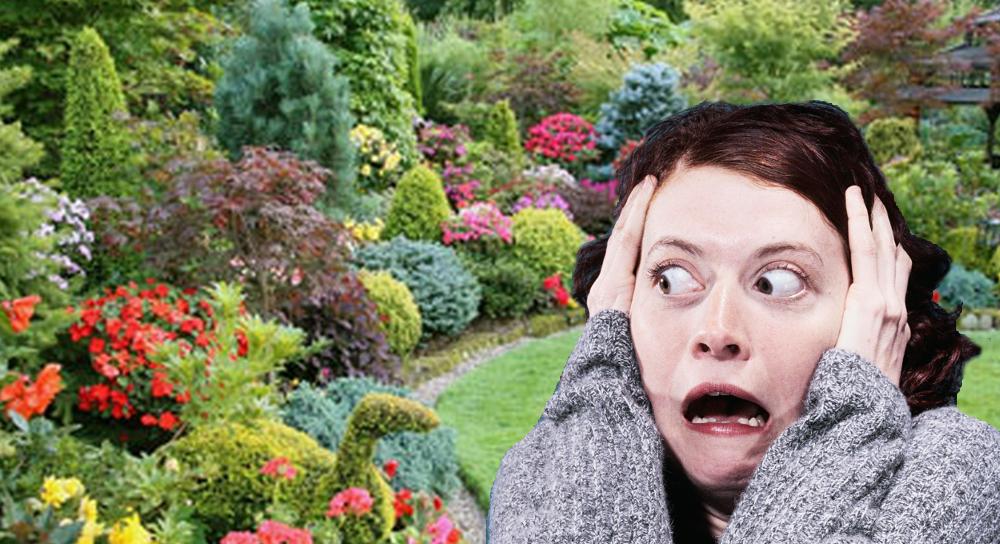 Fear of Garden